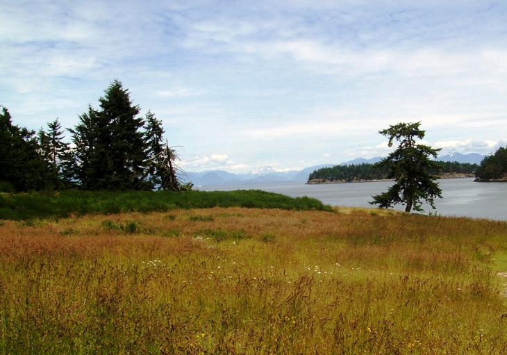 A view from Drumbeg Provincial Park on Gabriola Island